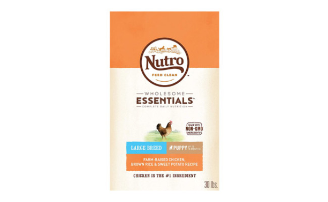 Nutro Wholesome Essentials Natural Dry Dog Food