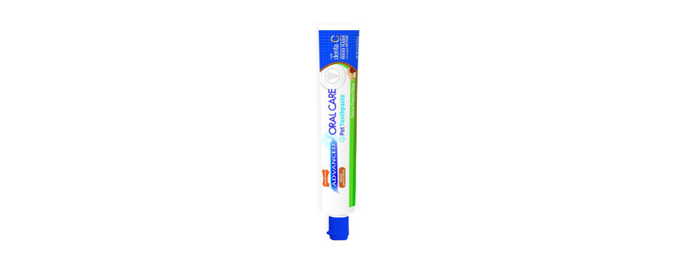 Nylabone Advanced Oral Care Toothpaste for Dogs