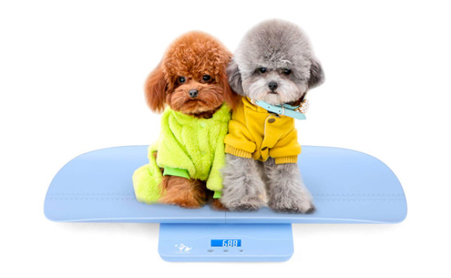 ONETWOTHREE Digital Pet Scale