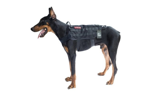 OneTigris Tactical Dog Training Vest Harness