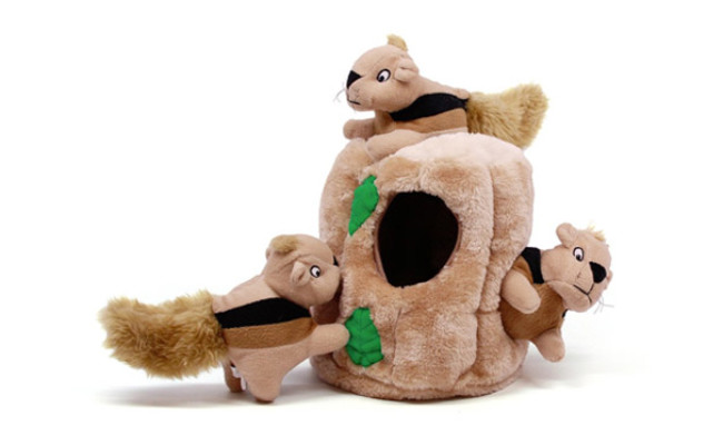 Outward Hound Interactive Puzzle Dog Toy