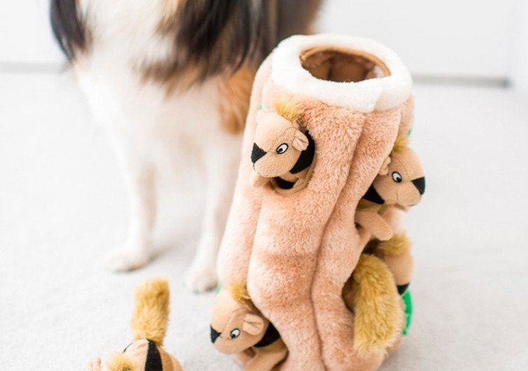Outward Hound Interactive Puzzle Toy