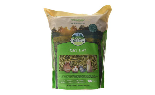 Oxbow Oat Hay for Guinea Pigs