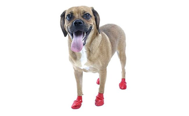 PAWZ Water-Proof Dog Boots