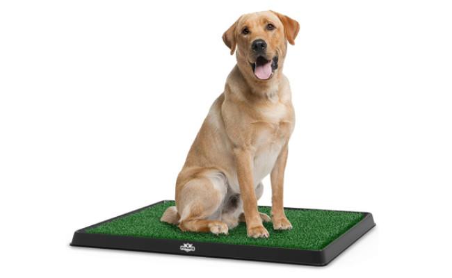 PETMAKER Artificial Grass Portable Potty Trainer