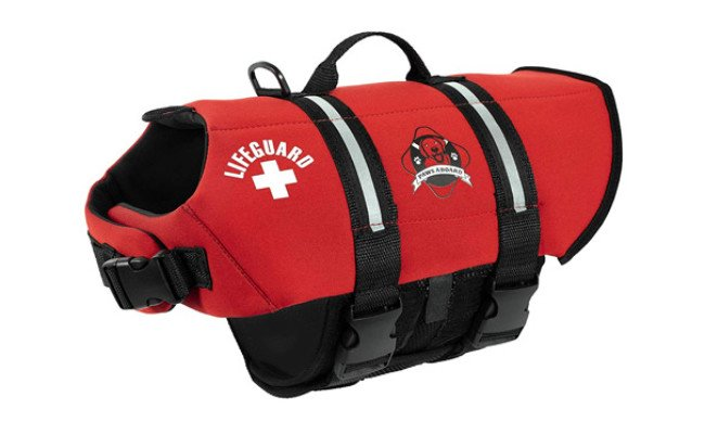 Paws Aboard Life Jacket for Dogs
