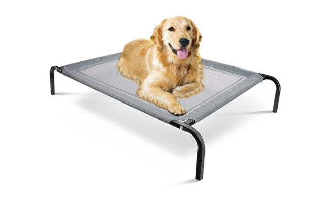 Paws & Pals Chew Resistant Dog Bed