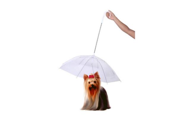 Perfect Life Ideas Dog Umbrella