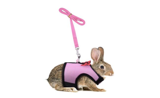 Persuper Soft Mesh Rabbit Harness