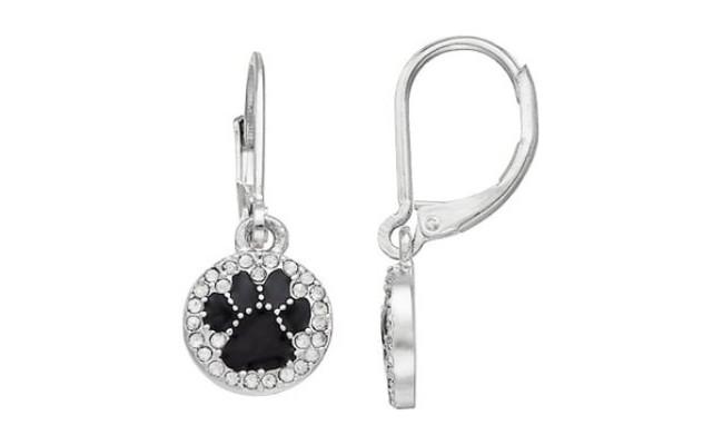 Pet Friends Paw Circle Drop Earrings