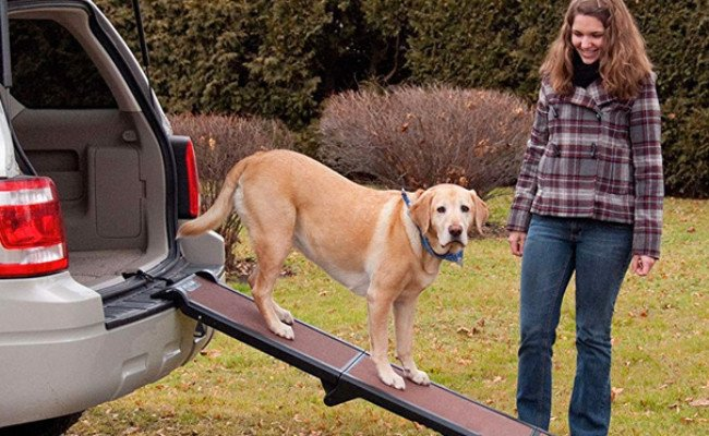 Pet Gear Full Length Dog Ramp