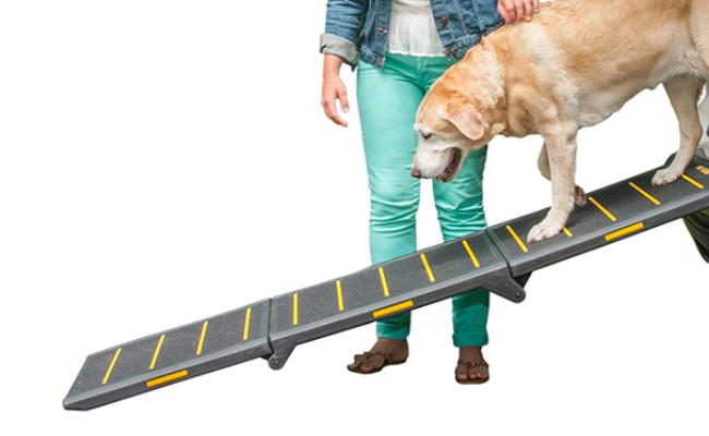 Pet Gear Portable Dog Ramp