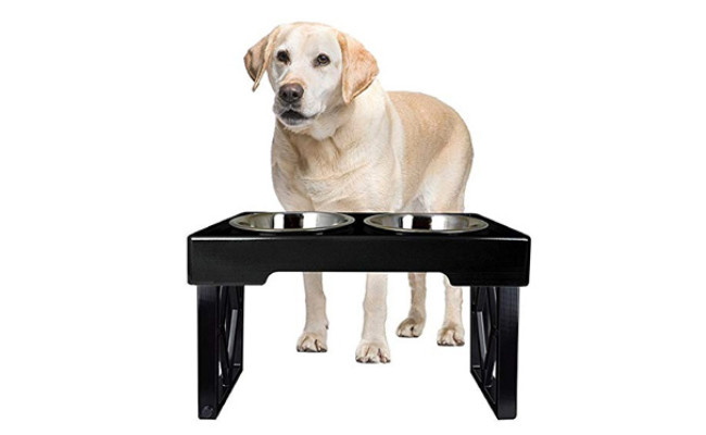 Pet Zone Adjustable Raised Dog Feeder
