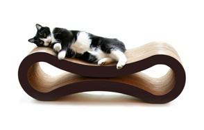 PetFusion Ultimate CatScratcher Lounge