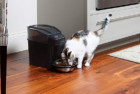 PetSafe Automatic Cat Feeder