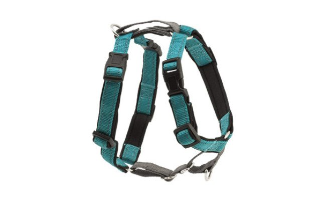 PetSafe Dog Harness for Running