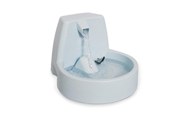 PetSafe Drinking Fountain for Cats