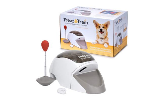 PetSafe Manners Minder Treat & Train Remote Reward Behavior Dog Trainer