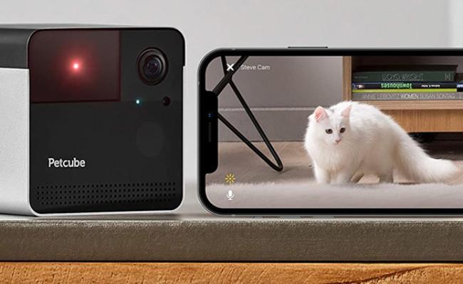 Petcube Play 2 Play Wi-Fi Pet Camera and Smartphone Interface