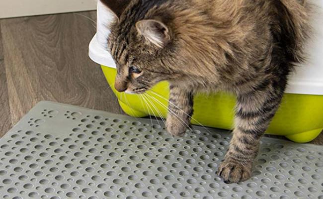 Petlinks Purr-fect Paws Cat Litter Mat