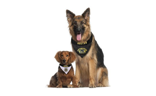 Pets First NHL Boston Bruins Bandana for Dogs