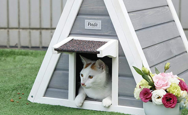 Petsfit Triangle Wooden Cat House