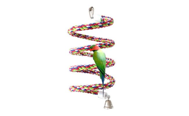 Petsvv Rope Bungee Bird Toy
