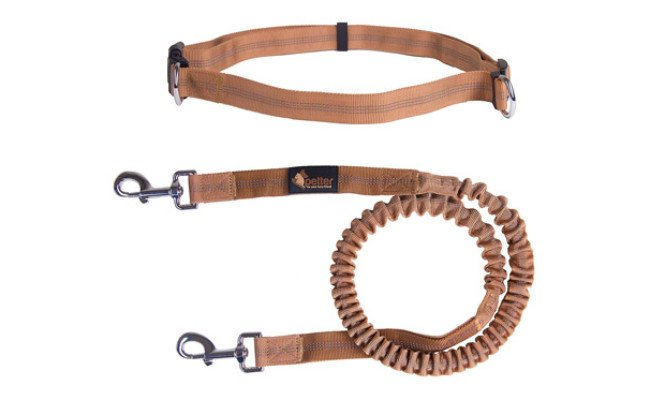 Petter Hands Free Leash for Dogs