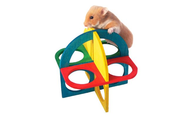 Play 'n' Climb Kit by Rosewood Pet