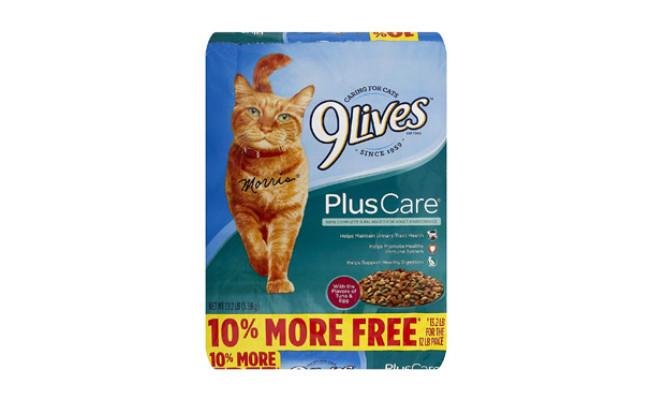 Plus Care Dry Cat Food