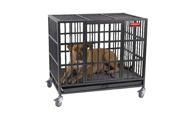 ProSelect Heavy Duty Dog Crate