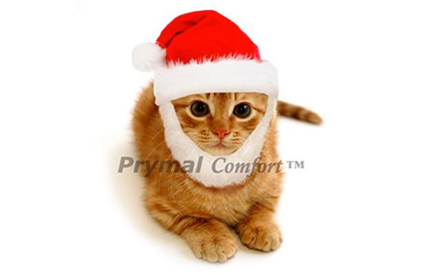Prymal Comfort Santa Cat Costume