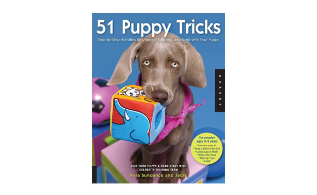 Puppy Tricks Step-by-Step Activities to Engage