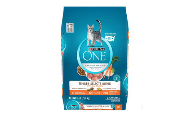 Purina ONE Adult Dry Cat Food