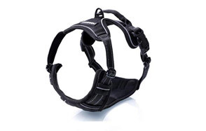 Rabbitgoo Dog Harness for Running
