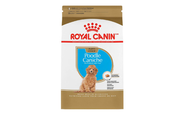 Royal Canin Dry Dog Food for Poodle