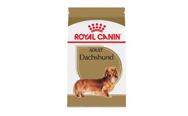 Royal Canin Dog Food for Dachshunds