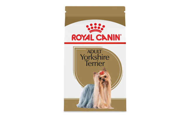 Royal Canin Dry Food for Yorkshire Terrier