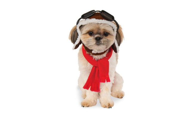 Rubies Costume Company Aviator Hat for Dogs