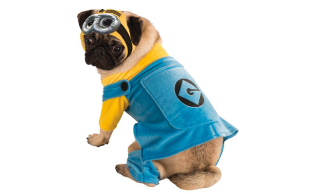 Rubie's Despicable Me Minion Pet Costume