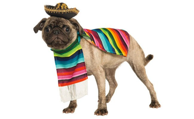 Rubie's Mexican Pet Costume