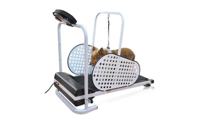 SHELANDY Pet Treadmill
