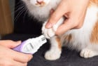 SHU UFANRO Electric Cat Clippers