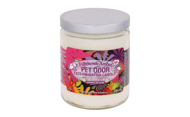 SPECIALTY PET PRODUCTS Odor Exterminator Jar Candle
