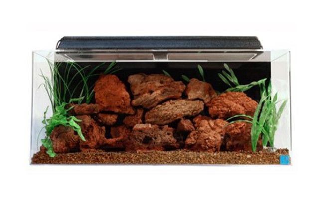 SeaClear Acrylic Bearded Dragon Enclosure