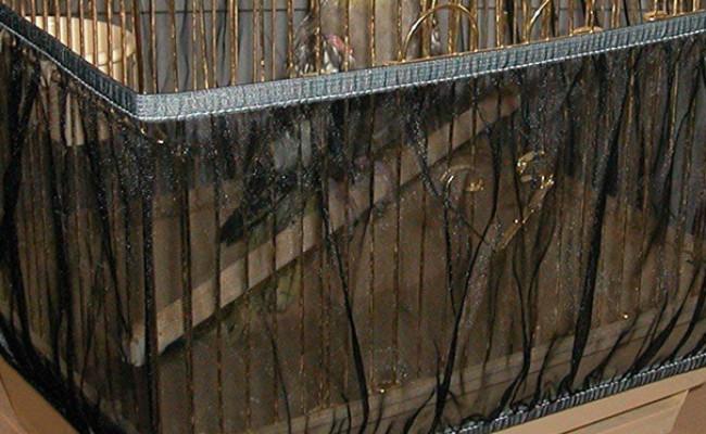 Sheer Guard Bird Cage Skirt