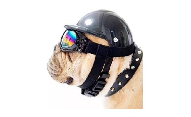 ShopTrend Dog Hat