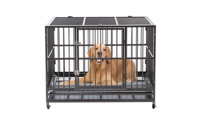 Sliverylake Dog Crate Kennel