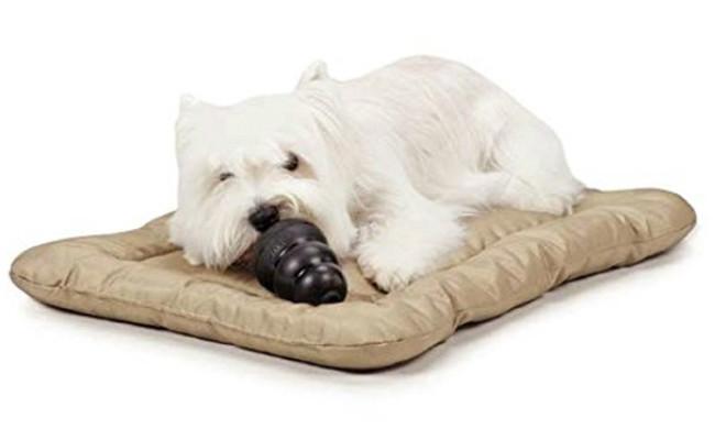 Slumber Pet Indestructible Dog Bed