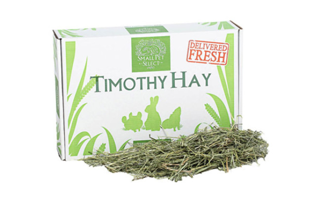 Small Pet Select First Cut Timothy Hay Small Animal Food